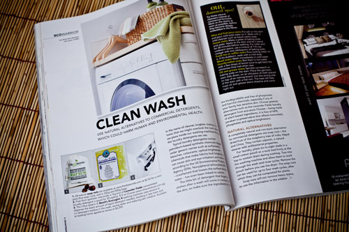 The DIY Secrets Soap Nuts featured in Home & Decor Magazine